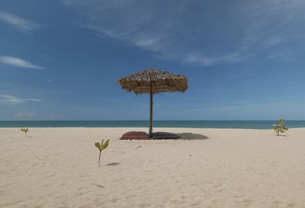 plaja salbatica romania