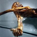 mumia-otzi
